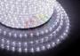 Дюралайт LED, постоянное свечение (2W) - белый Эконом 24 LED/м , бухта 100м Neon-Night