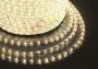 Дюралайт LED, постоянное свечение (2W) - теплый белый Эконом 24 LED/м , бухта 100м Neon-Night