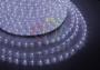 Дюралайт LED, эффект мерцания (2W) - белый Эконом 24 LED/м , бухта 100м Neon-Night