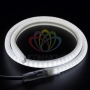 Гибкий Неон LED SMD, форма - D, белый, 120 LED/м,  бухта 100м Neon-Night