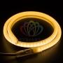 Гибкий Неон LED SMD, форма - D, тёплый белый, 120 LED/м,  бухта 100м Neon-Night