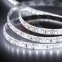 LED лента силикон, 8мм,  IP65, SMD 3528, 120 LED/m, 12V, белая Neon-Night
