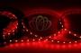 LED лента открытая, ширина 10 мм, IP23, SMD 5050, 60 диодов/метр, 12V, цвет светодиодов красный Neon-Night