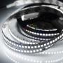 LED лента 24 В, 10 мм, IP23, SMD 2835, 240 LED/m, цвет свечения белый (6000 К)