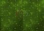 """Гирлянда """"Светодиодный Дождь"""" 2х3м, постоянное свечение, белый провод, 220В, диоды зеленые Neon-Night"""