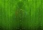 """Гирлянда """"Светодиодный Дождь"""" 2х3м, постоянное свечение, прозрачный провод, 220В, диоды зеленые Neon-Night"""