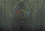 """Гирлянда """"Светодиодный Дождь"""" 2х9м, постоянное свечение, прозрачный провод, 220В, диоды тепло-белые Neon-Night"""