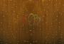 """Гирлянда """"Светодиодный Дождь"""" 2х1,5м, постоянное свечение,прозрачный провод, 220В, диоды желтые Neon-Night"""