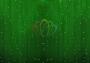 """Гирлянда """"Светодиодный Дождь"""" 2х1,5м, постоянное свечение, прозрачный провод, 220В, диоды зеленые"""