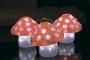 """Акриловая светодиодная фигура """"Семья мухоморов 3 штуки"""",15х15х15 см, 60 светодиодов, IP44 понижающий трансформатор в комплекте Neon-Night"""