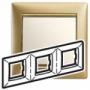 Рамка 3п горизонтальная матовое золото Valena
