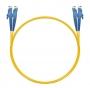 Шнур оптический dpc E2000/UPC-E2000/UPC 9/125 3.0мм 1м LSZH (патч-корд)
