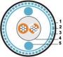 Кабель для шины ProfiBus, 1х2х19/0,16 - 22 AWG SFTP, в полиуретановой оболочке Hyperline