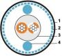 Кабель для шины ProfiBus PA, 1х2х1,0 STP, в ПВХ-оболочке Hyperline